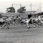197105pic