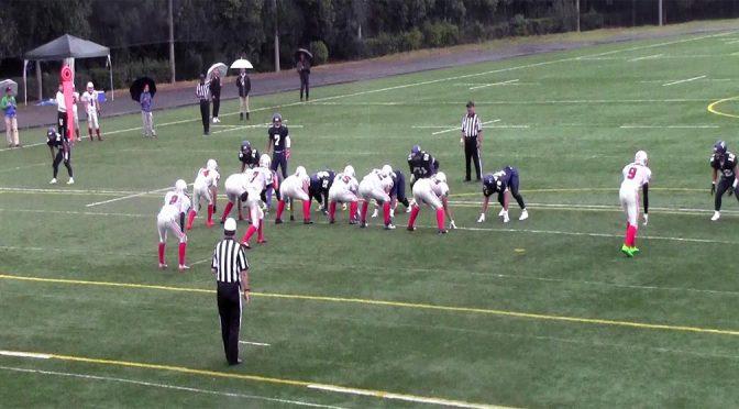 2017年度エリアリーグ戦:帝京平成大学ブルーウイングス戦